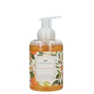 Foaming Hand Soap 4 Pack-Orange & Honey