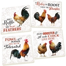 ROOSTER - 4PK