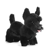 Scottish Terrier Small