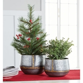 Galvanized Tin Beaded Planter Set