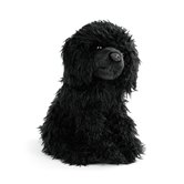 Black Poodle Small