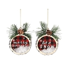 Wood Slice Glass Ornaments - 2 Assorted